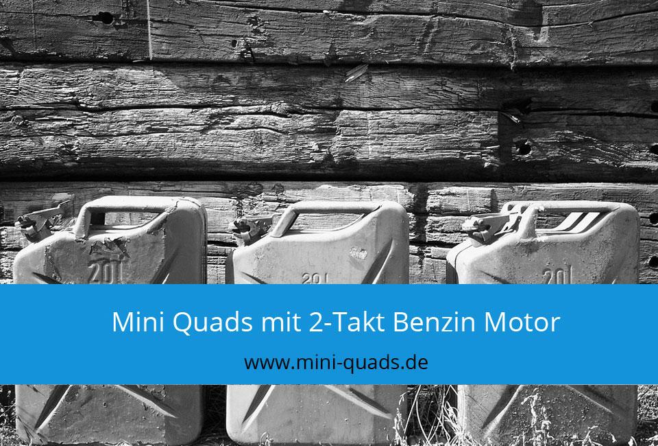 Mini Quads mit 2-Takt Benzin Motor