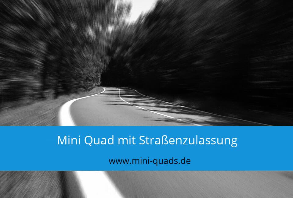 Mini Quad mit Straßenzulassung