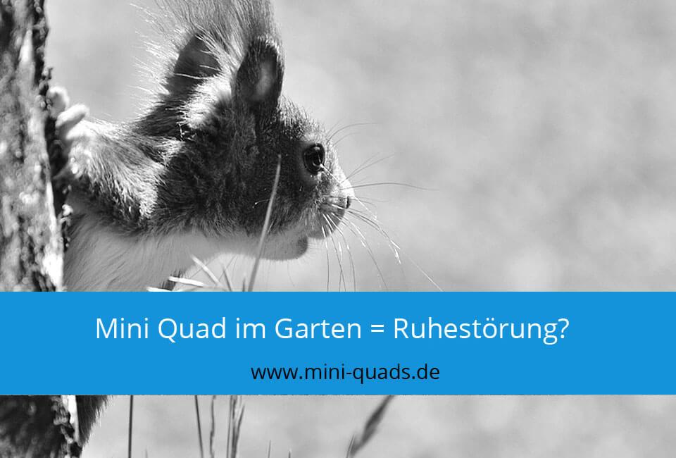 Mini Quad Ruhestörung im Garten