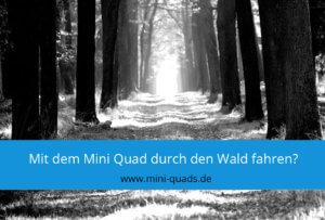▶  Darf man mit einem Mini Quad durch den Wald fahren?