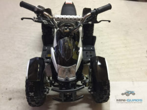 Elektro Kinderquad ATV Cobra 800 Watt im Test