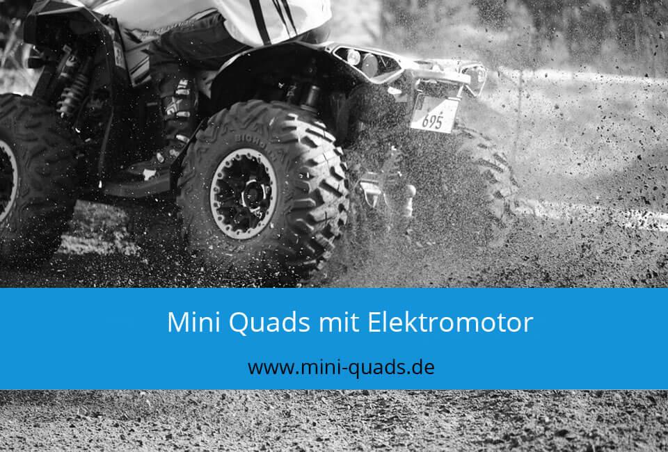 Mini Quad mit Elektromotor